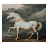 Adonis, King George III's Favorite Charger Giclee Print by James Ward