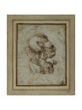 Caricature of an Elderly Woman Giclee Print by  Leonardo da Vinci