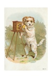 Trade Card of a Terrier Photographer Giclee Print