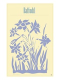 Daffodil Giclee Print by Steve Collier