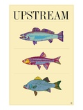 Upstream Giclee Print by Steve Collier