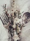 Flowers and Silverware Fotografisk tryk af Kim Koza