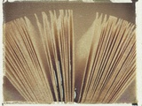Book Pages No.2 Photographic Print by Jennifer Kennard