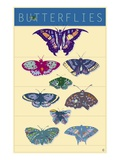 Butterflies Giclee Print by Steve Collier