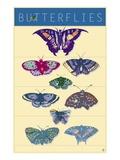 Butterflies Giclee Print by Steve Collier