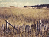 Cape Cod Sandunes Photographic Print by Jennifer Kennard