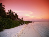 Tropical Beach at Sunset Photographic Print