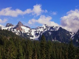 Forest and Mountain Range Photographic Print by Robert Glusic