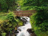 Bridge over Waterfall Photographic Print by Robert Glusic