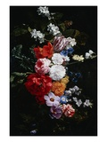 A Swag of Pink and White Roses Giclee Print by Nicolaes van Veerendael