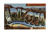 Greeting Card from Arizona Giclee Print