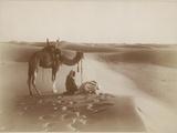 Desert Travelers Bow in Praise to Allah Fotografie-Druck von  Lehnert & Landrock