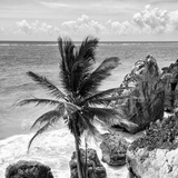 ¡Viva Mexico! Square Collection - Tulum Caribbean Coastline XI Photographic Print by Philippe Hugonnard