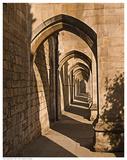 Cloister Arches Prints