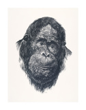 Charlie Premium Giclee Print by Cecile Curtis
