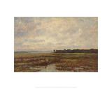 Potomac Marsh Giclee Print by Max Weyl