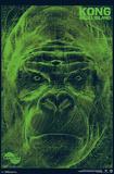 Kong: Skull Island- LANDSAT Scan Posters