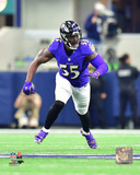 NFL: Terrell Suggs 2016 Action Photo