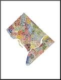 Washington DC (color) Mounted Print