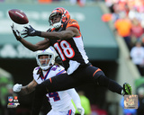NFL: A.J. Green 2016 Action Photo