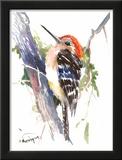 Red Headed Woodpecker Print by Suren Nersisyan