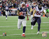 NFL: Dion Lewis Touchdown 2016 AFC Divisional Playoff Game Photo