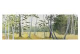 Birch Field Posters by Elissa Gore