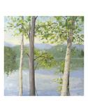 Cooper Lake II Print by Elissa Gore