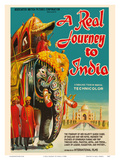 A Real Journey To India - Queen Elizabeth's trip through India, Pakistan, Nepal and Persia Prints by  Pacifica Island Art