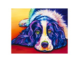 English Springer Spaniel Prints by Steven Schuman