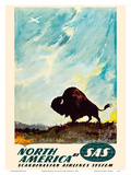 North America - by SAS Scandinavian Airlines System - American Bison (Buffalo) Posters by Otto Nielsen