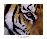 Eye of the Tiger Prints by Lucie Bilodeau