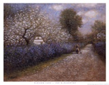 Blossom Lane Posters by Jon McNaughton