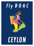 Ceylon (Sri Lanka) - BOAC (British Overseas Airways Corporation) - Sri Lankan Tea Picker Poster by  Dick Negus & Philip Sharland