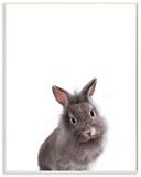 Baby Bunny Studio Photo Wood Sign