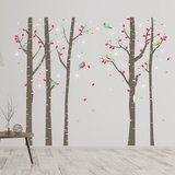 Birch Tree Forest Autocollant mural