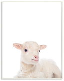 Baby Lamb Studio Photo Wood Sign