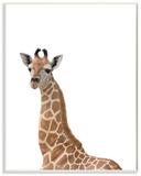Baby Giraffe Studio Photo Wood Sign