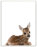 Baby Fawn Studio Photo Wood Sign