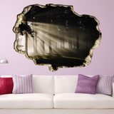 View Through the Wall - Forest Light Wall Decal