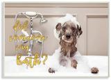 Did Someone Say Bath Bubble Bath Dog Wood Sign