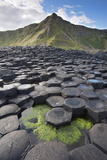 Giant'S Causeway, Looking In To Land, Causeway Coast Photographic Print by Bernard Castelein