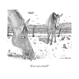"""Ever eat a bird?"" - New Yorker Cartoon Stretched Canvas Print by Michael Crawford"