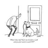"""What's that, boy? You're too tired for a walk and you just want to watch  - New Yorker Cartoon Stretched Canvas Print by Tom Chitty"