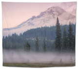 Misty Morning at Mount Hood Meadow Tapestry by Vincent James