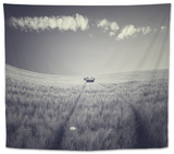 Mulane Tapestry by Luis Beltran
