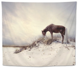 Chocolate Horse Feeding from Dry Brush Tapestry by Jan Lakey