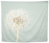 Pale Blue Wishes Tapestry by Susannah Tucker