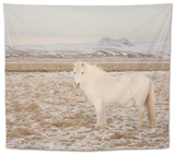 Iceland Horse, Near Hvollsvsllur, South Iceland, Iceland Tapestry by Rainer Mirau