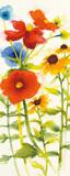 Americana Meadow III Posters by Shirley Novak